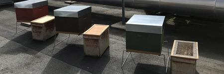 Des ruches sur le toit de l'IBIS
